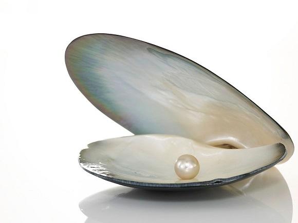 Морская жемчужина