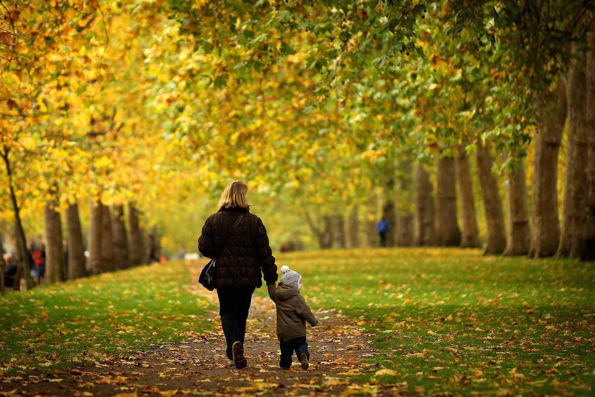 Autumn Colours In St James's Park