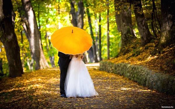 Яркий и красивый свадебный зонтик