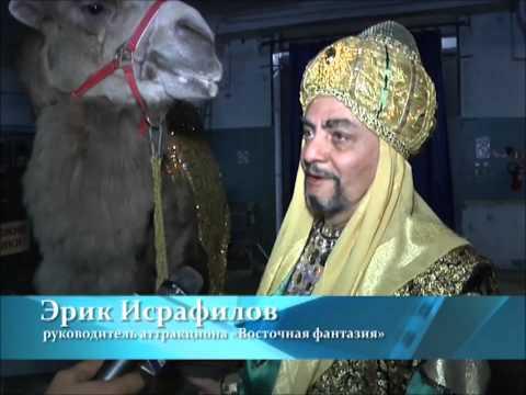 История Пермского цирка