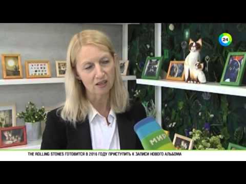 В Минске открылся Музей кота