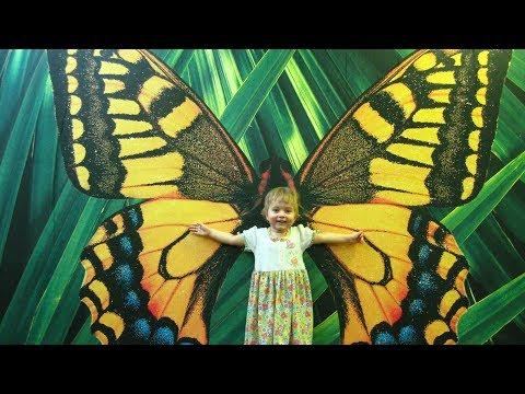 Butterfly Park - Ekaterinburg. Парк бабочек - Екатеринбург