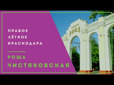 Чистяковская Роща | Парк Краснодара с историей | Самый зеленый парк города