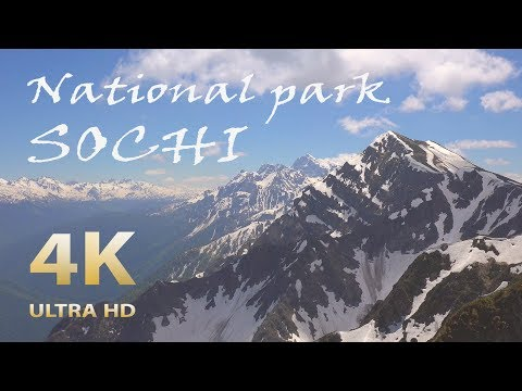 Sochi National Park. Russia. Amazing Caucasus. Nature relaxation film 4К UHD