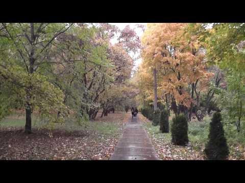 Ботанический сад. Самара.