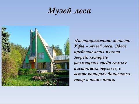 МУЗЕЙ ЛЕСА г Уфа. Обзор Музеев Уфы. ДИКИЕ ЖИВОТНЫЕ