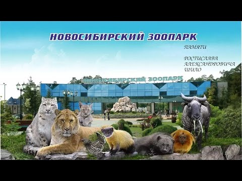 Новосибирский зоопарк. Памяти Р.А.Шило