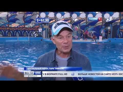 Лучший дельфинарий России