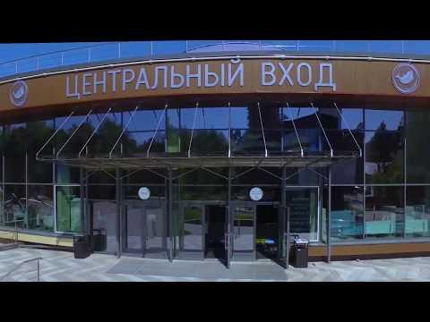 """. Дельфинарий в Новосибирске. Центр """"Дельфиния"""""""