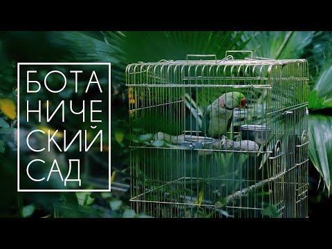 Центральный Ботанический Cад НАН Беларуси