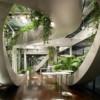 Декоративные растения для дома. Вопросы и ответы