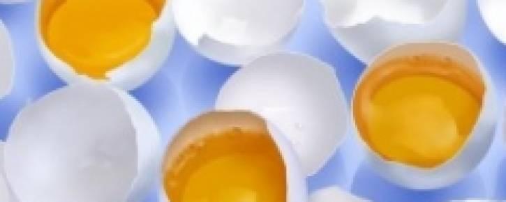Чем полезны куриные яйца?
