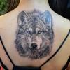 Значение тату волка у разных народов