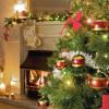 Что подать на стол в новогоднюю ночь 2015?