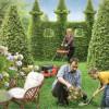 С чего начать разведение своего первого сада
