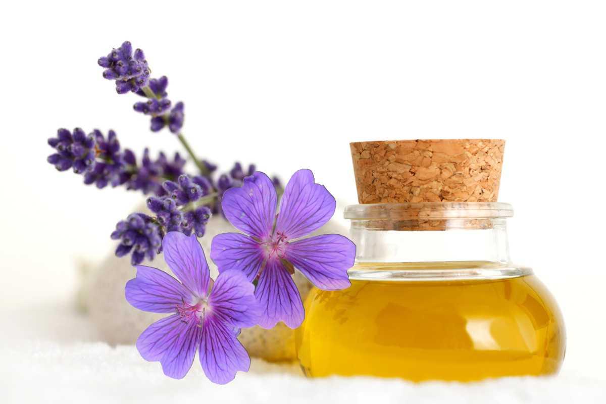 lavender_geranium_oil
