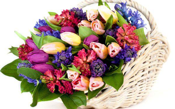 Какие цветы подарить маме