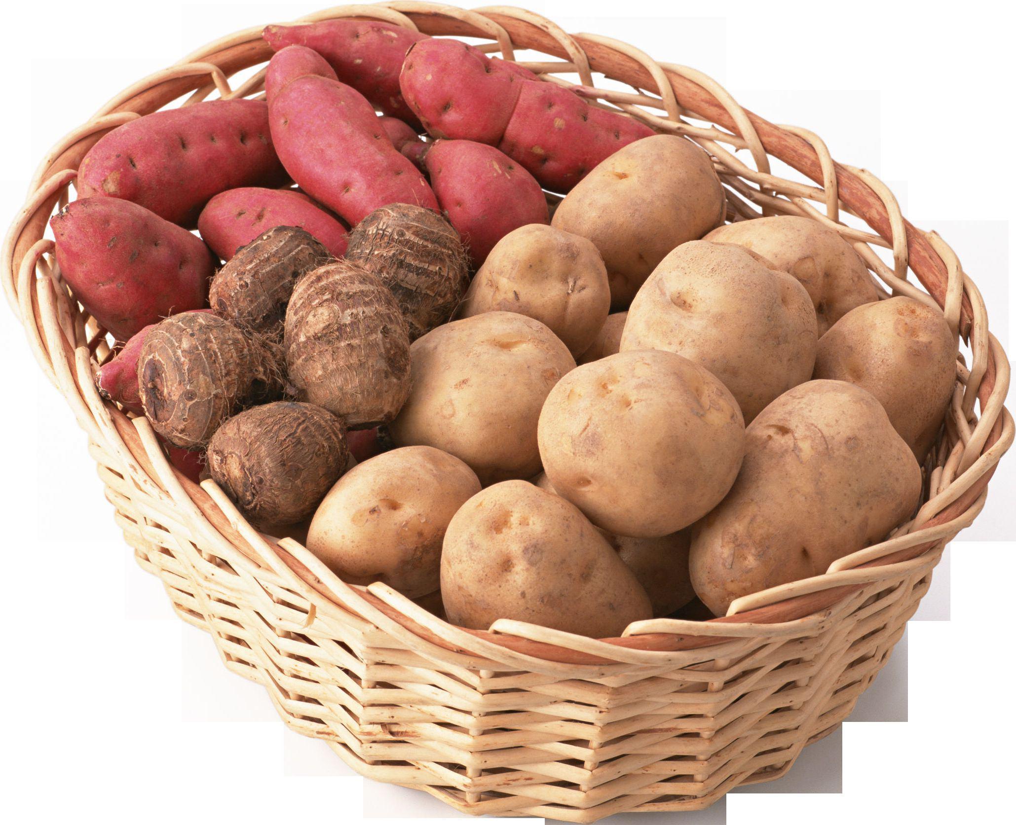 Польза и вред сока картофеля