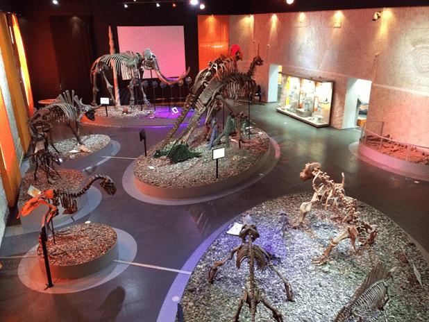 Куда пойти с ребенком в Перми: Музей пермских древностей