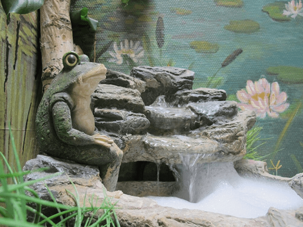 Куда пойти с ребенком в Самаре: Музей Лягушки