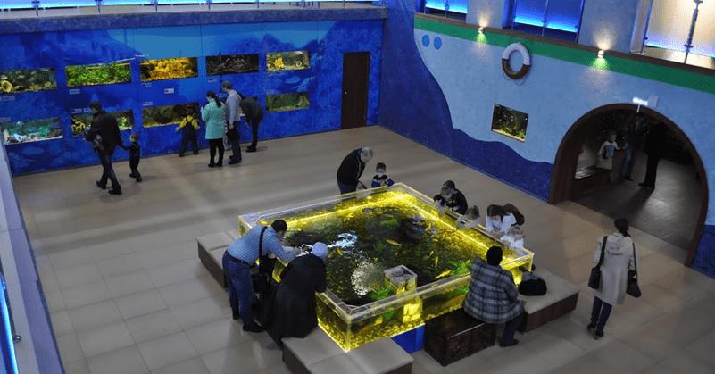 Выставочный зал «Аквариум»