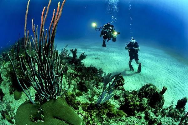 Подводные маски Marlin. С нами нырять интересней